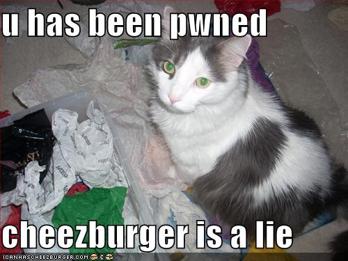The cheezburger is a lie!